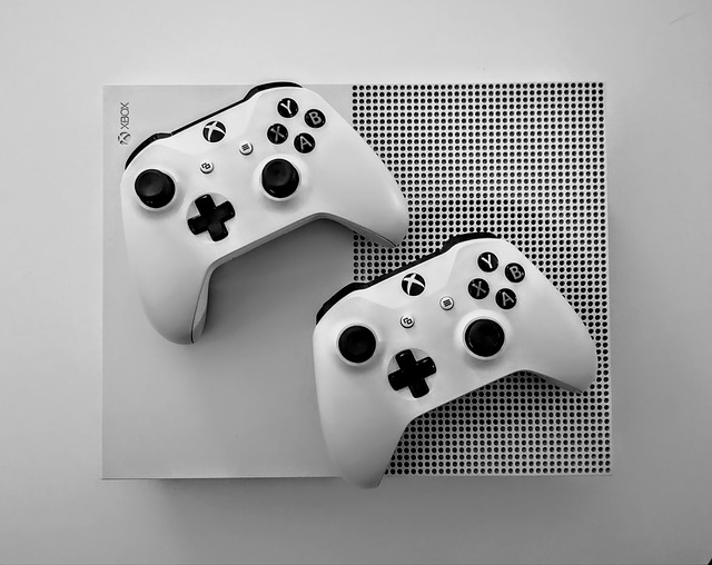Gaming Controller weiß
